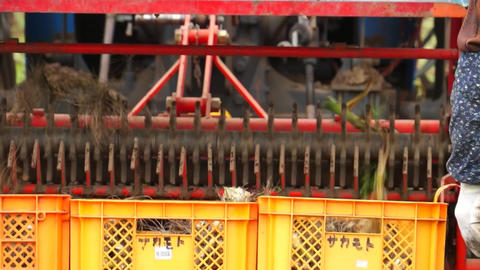 Japanese farm work, farm equipment, fields, tractors Live Action