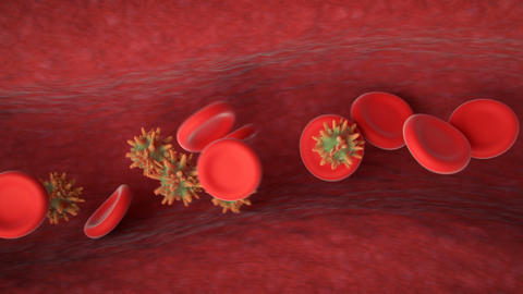 Virus infection visualisation 3D render animation Animation