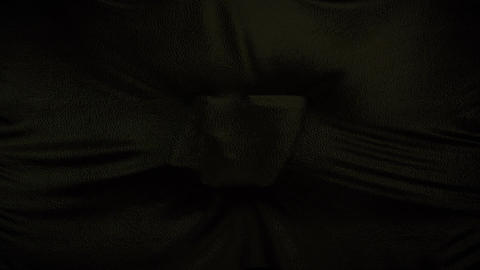 LeatherCanvasCountdown Animation