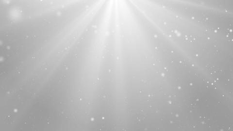 Particles white bright glitter bokeh dust abstract background loop 03 Animación