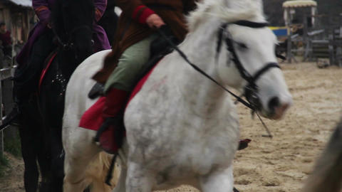 Group of horsemen in medieval suits riding pedigree horses at gallop, royal army Footage