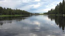 Island Park Henry Fork River forest 4K Stock Video Footage