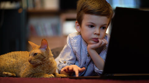 Funny child with kitten using a laptop at home GIF