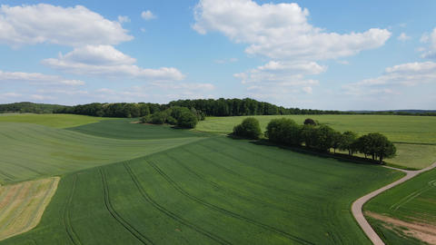 Beautiful farmlands from above - rural scenery Live Action