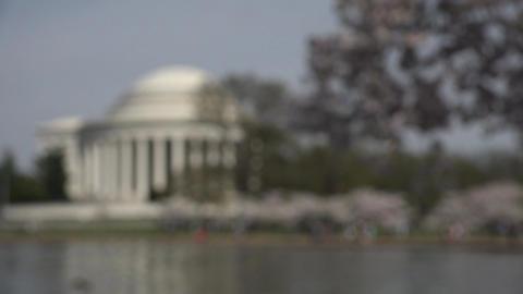 Jefferson Monument Washington DC rack focus 4K 049 Footage