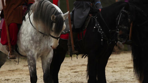 Beautiful horses with riders standing before an old fortress, Middle Ages Footage