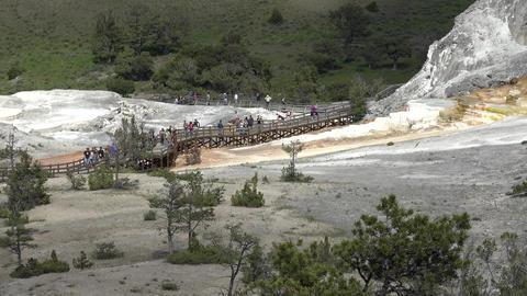 Mammoth Hot Springs Yellowstone Park tourism cascade terrace 4K Footage