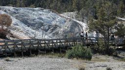 Mammoth Hot Springs boardwalk P HD 2480 Footage