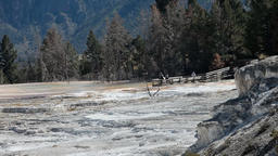 Mammoth Hot Springs cascades P HD 2481 Footage