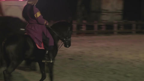 Medieval demonstration of beautiful and expensive horses. Horse-riding skills Footage