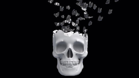 Skull And Butterflies Animation