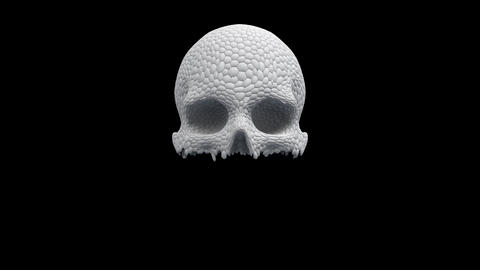 Skull Of Pieces Animation