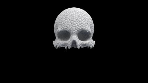 Skull Of Pieces CG動画
