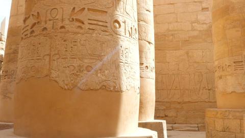 Column Hall With Hieroglyphics Live Action