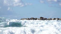 Splashing waves by wavebreaker, real time Live Action