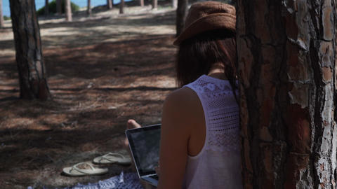 Woman typing on a laptop working outside sitting in a pine forest near the sea beach Live Action