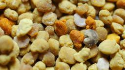 Macro shot of Bee pollen grains Live Action
