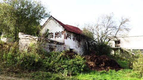 old house in nature GIF