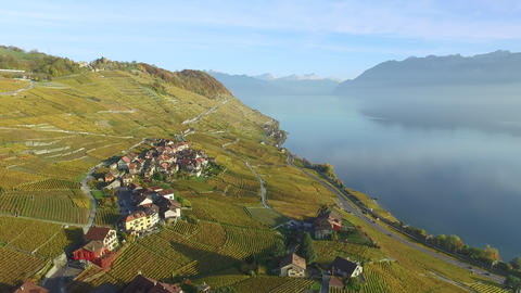 Lavaux - famous vineyard terraces in Switzerland Live Action
