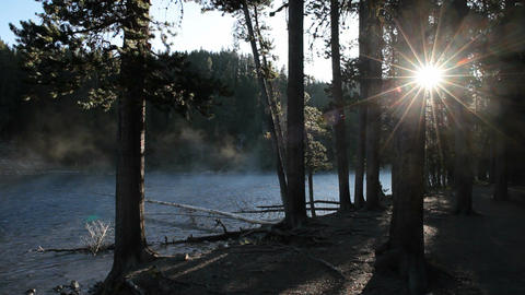 Mist sun through trees river P HD 2534 Footage