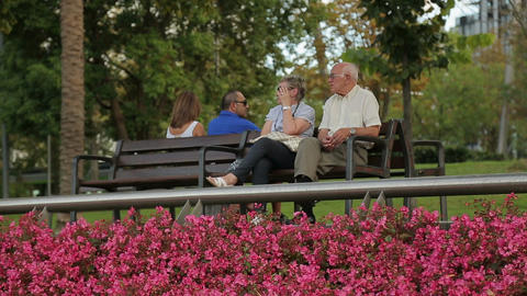 Couple of senior people sitting on bench in city garden, state social policy Footage