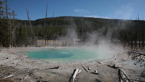 Norris Geyser Basin pool Yellowstone National Park P HD 2509 Footage