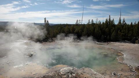 Norris geyser Emerald Spring P HD 2493 Footage