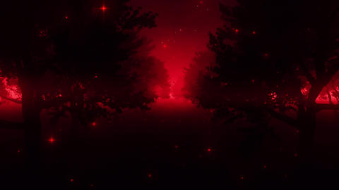 Red Enchanted Forest by Night VJ Loop Background CG動画