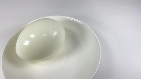 Boiled egg023 ライブ動画