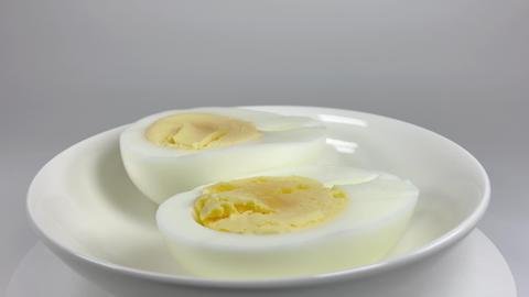 Boiled egg050 ライブ動画