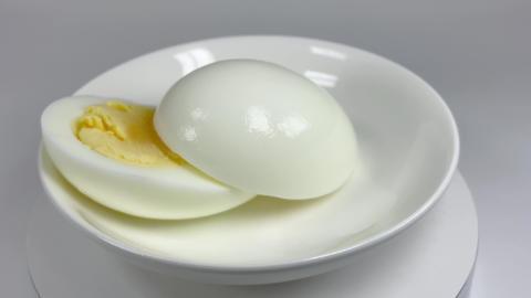 Boiled egg054 ライブ動画