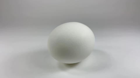 Chicken egg008 ライブ動画