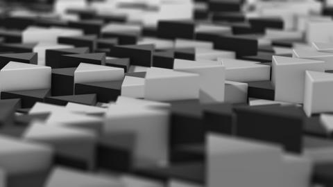 Chess Prisms - 2 Videos animados