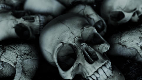 Human Skulls and Burned Ashes Live Action