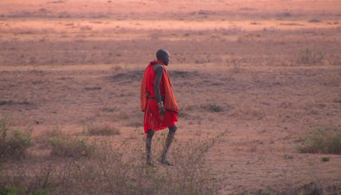 A tribesman crosses through the bush Stock Video Footage