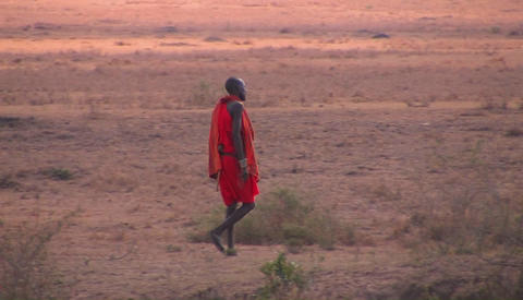 A tribesman crosses through the bush Footage