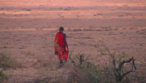 A tribesman crosses through the bush Stock Video Footage