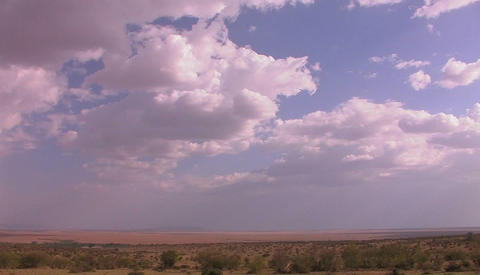 High clouds drift over grassy plains Stock Video Footage