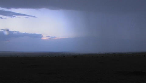 Rainfall starts to descend on the plains in Africa Stock Video Footage