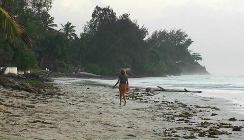 A woman walks along a beach waving her arms, a dog runs... Stock Video Footage