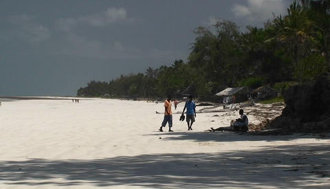 People walking along a seashore Stock Video Footage