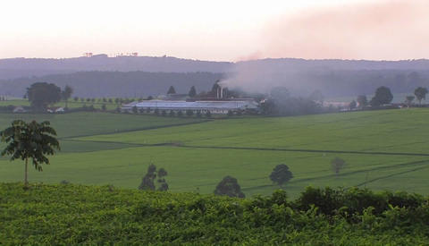 Smoke billows from a building on a farm Stock Video Footage
