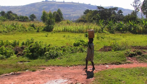 A woman walks along a country road, carrying a package on... Stock Video Footage
