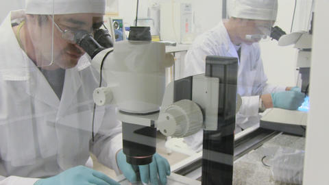 Man Looking In Microscope stock footage