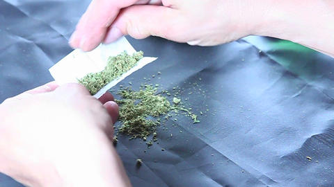 A person puts marijuana into rolling papers Live Action
