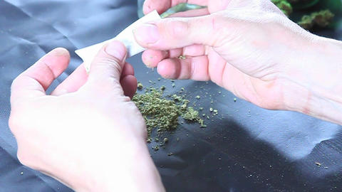 A person rolls a tight joint Footage