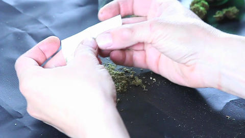 A person rolls a tight joint Stock Video Footage