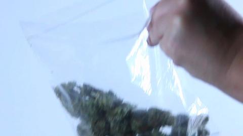 A person empties a jar of marijuana into a plastic bag Stock Video Footage