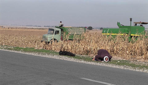 A tractor plows a field in Iran Stock Video Footage