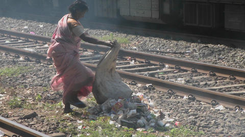 A woman dumps a bag of trash on the railroad tracks Footage